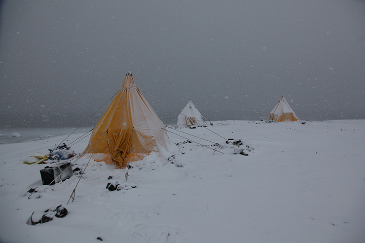 Tents in blizzard (Meng)alt