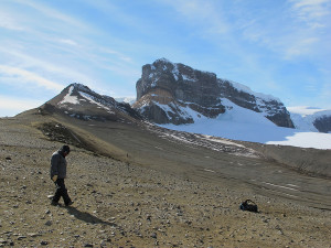 Eric Roberts hikes across Sandwich Bluff on Vega Island during the 2011 expedition. Photo by Joe Sertich